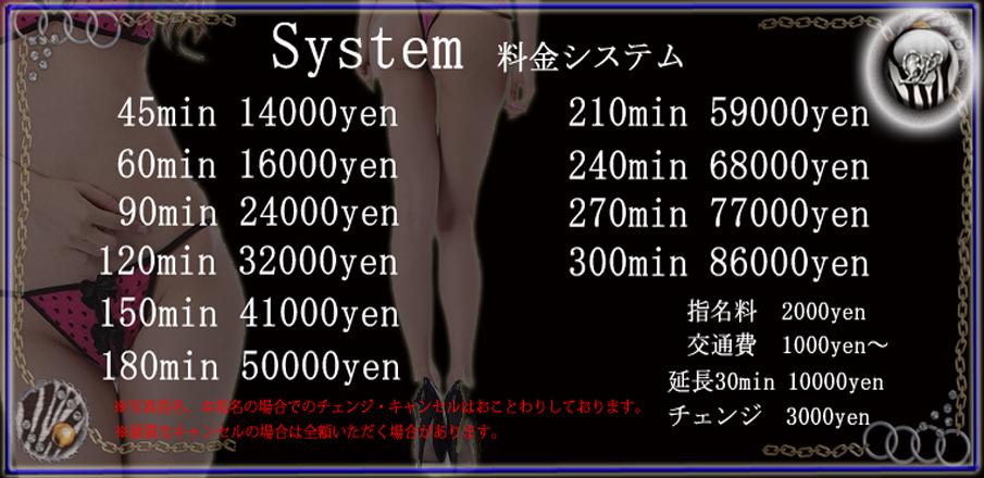 system_28